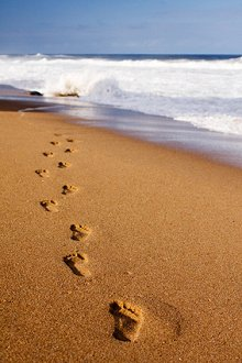 Latest News/Resources. Library Image: Footsteps in Sand